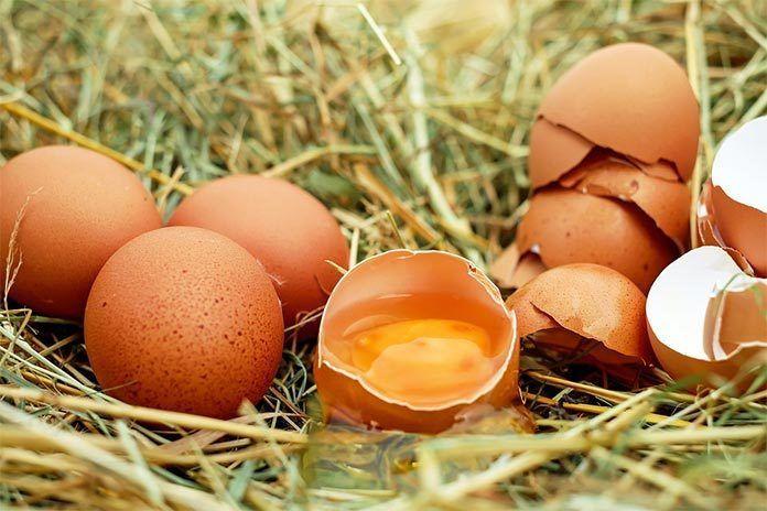 Etiquetado alimentario y lectura de un huevo