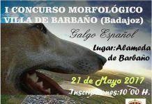 Cartel I Concurso Morfológico del Galgo Español Villa de Barbaño 2017