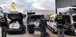 """Operación """"Picudo"""", la Guardia Civil detuvo a los seis integrantes de un grupo delictivo"""