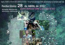Cartel del XXVII Certamen Calamonte Joven 2017