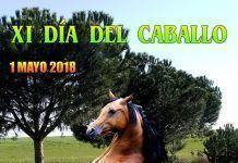 Cartel XI Día del Caballo en Guadiana
