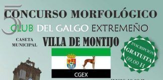 Cartel del V Concurso Morfológico del Galgo Extremeño Villa de Montijo