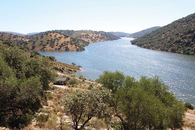 El río se hermana con la dehesa a su paso por Extremadura