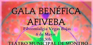 Cartel de la gala benéfica a favor de AFIVEBA