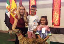 IV Concurso Morfológico del Galgo Español Ciudad de Montijo