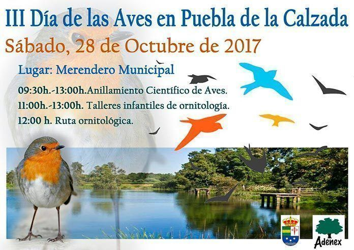 Cartel día de las aves 2017