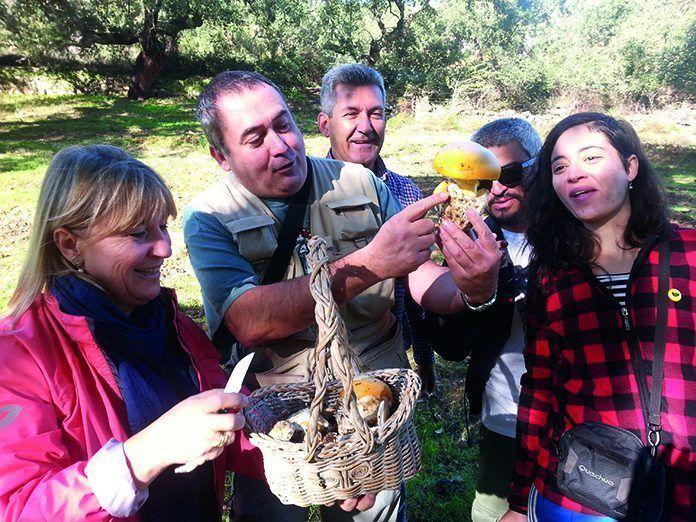 Puebla de Obando organiza numerosas actividades en las Jornadas Micologicas Sierra de San Pedro