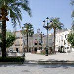 Palmeras de la Plaza de España de Montijo