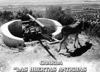 Cartel de la charla en Guadiana del Caudillo sobre las huertas antiguas en las Vegas Bajas