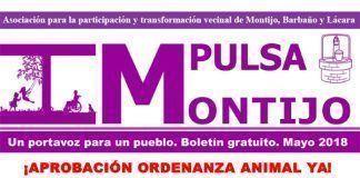 Cabecera del boletín de mayo de la Asociación Impulsa Montijo