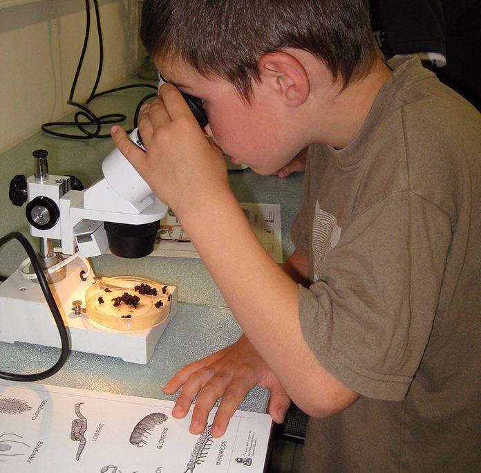 Jóvenes científicos