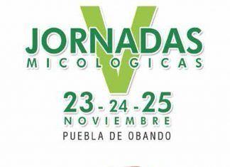 Cartel V Jornadas Micológicas Sierra de San Pedro