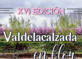 Cartel Valdelacalzada en Flor 2019.