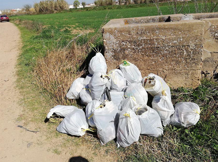 Bolsas de basura recogidas durante la actividad.