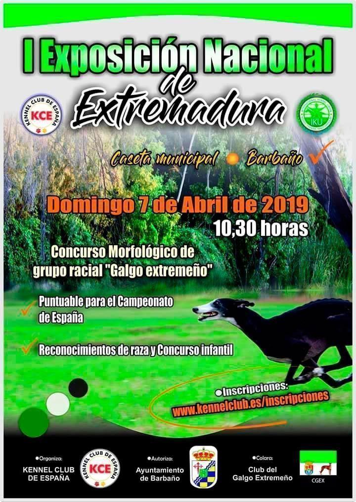 Cartel-I-Exposicion-Canina-Nacional-de-Barbano
