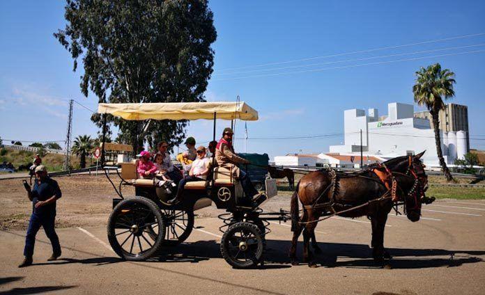 dia-del-caballo-2019-guadiana-del-caudillo