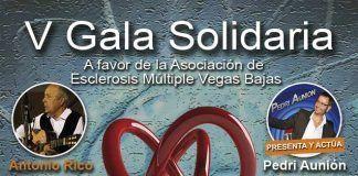 Cartel anunciador de la V Gala Solidaria a favor de ADEMVEBA.