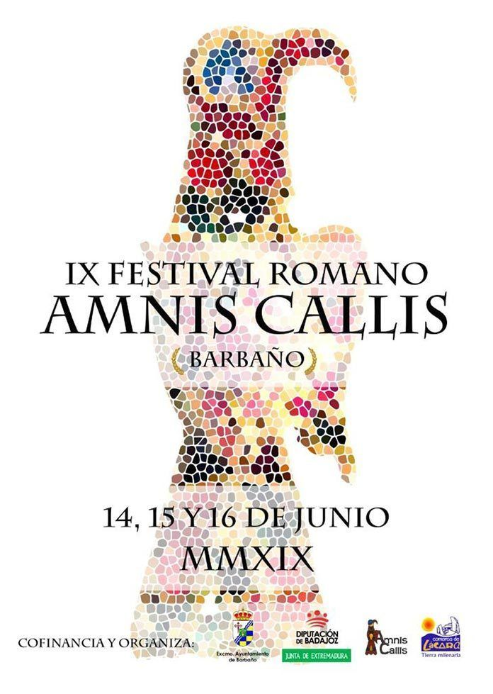 cartel-IX-Festival-Romano-Amnis-Callis-de-Barbano