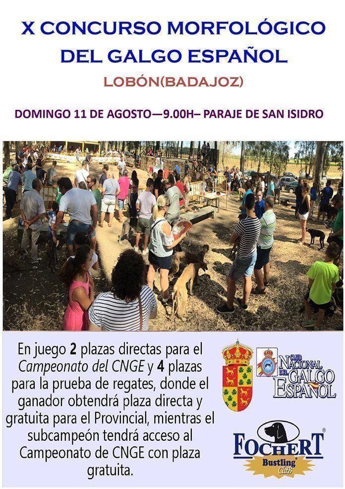 CARTEL-CONCURSO-GALGO-LOBON-2019