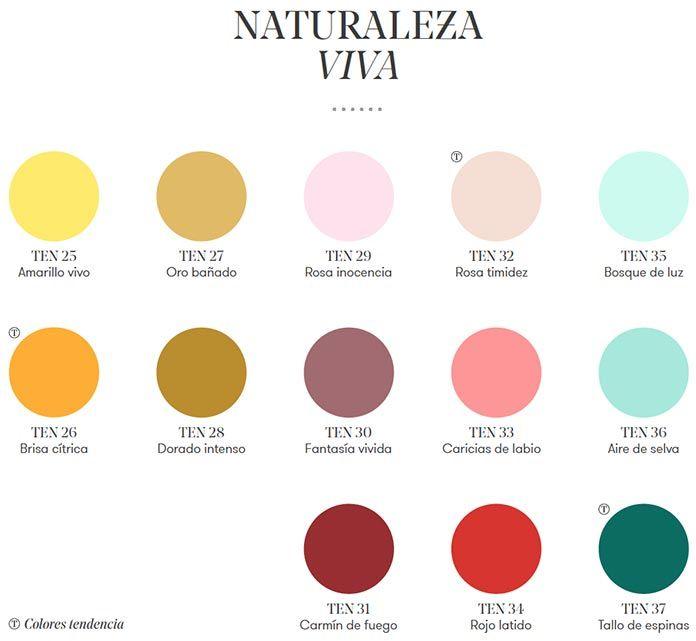Naturaleza-Viva-colores-Monto-Pinmader