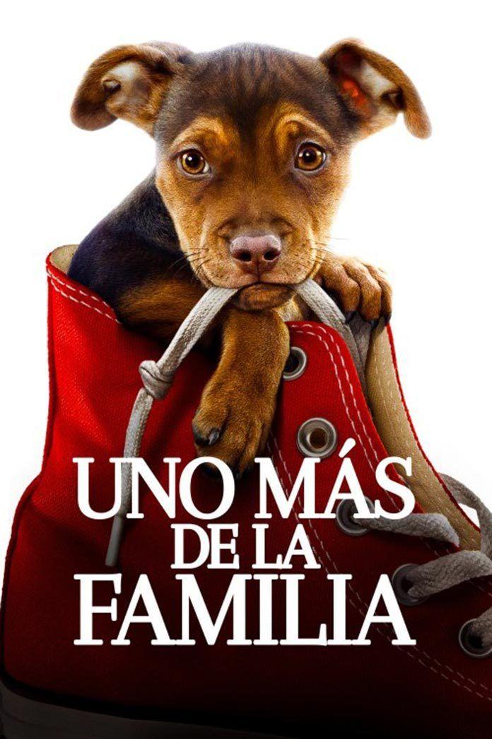 cartel-uno-mas-de-la-familia-2019