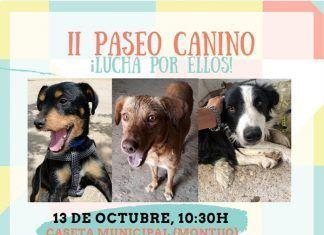 II Paseo canino en Montijo 2019
