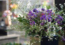 flores Todos los Santos