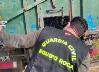 Intervenidas 11 toneladas de aceitunas sin trazabilidad en un puesto de Tierra de Mérida-Vegas bajas