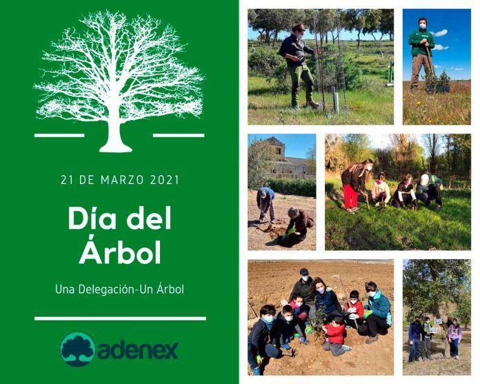 ADENEX celebra el Día del Árbol